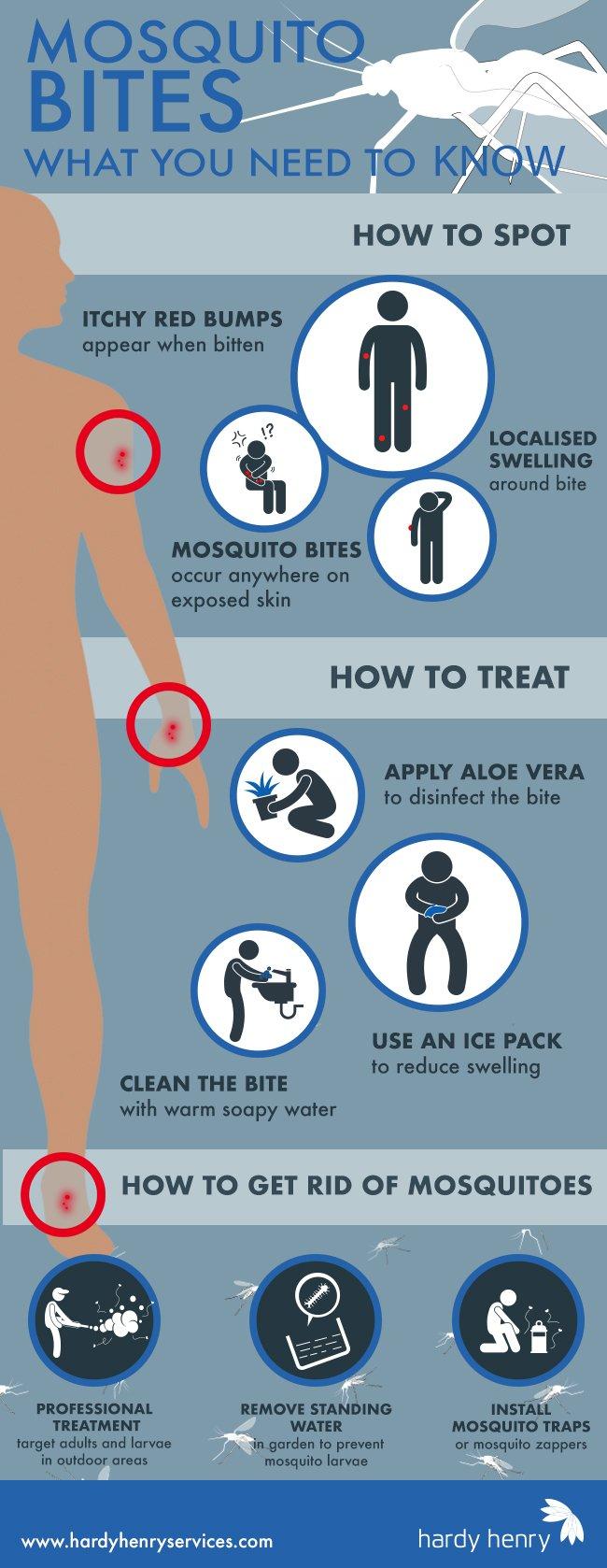 mosquito control pest control mauritius