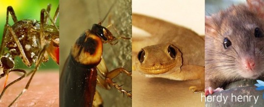 The most dangerous pests–who are lurking around